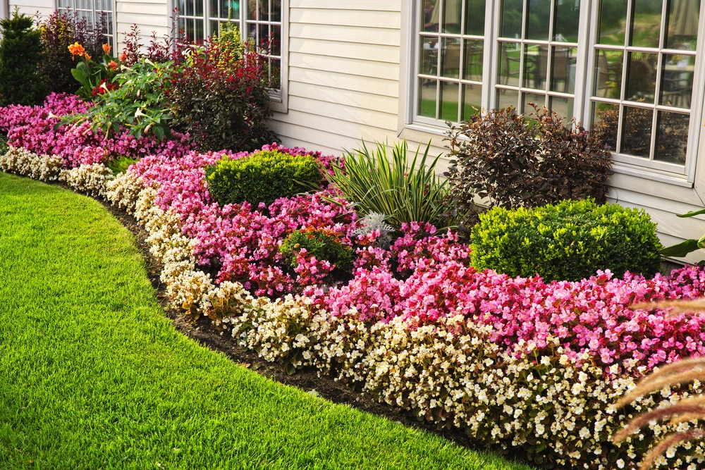 As With Prime Real Estate, Where You Locate Your Garden Will Be Key To Its  Success. The Majority Of Garden Plants Need About Six Hours Of Full Sun  Each Day.